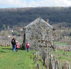Oenotourisme dans les Hauts-de-France promenade dans le champagne